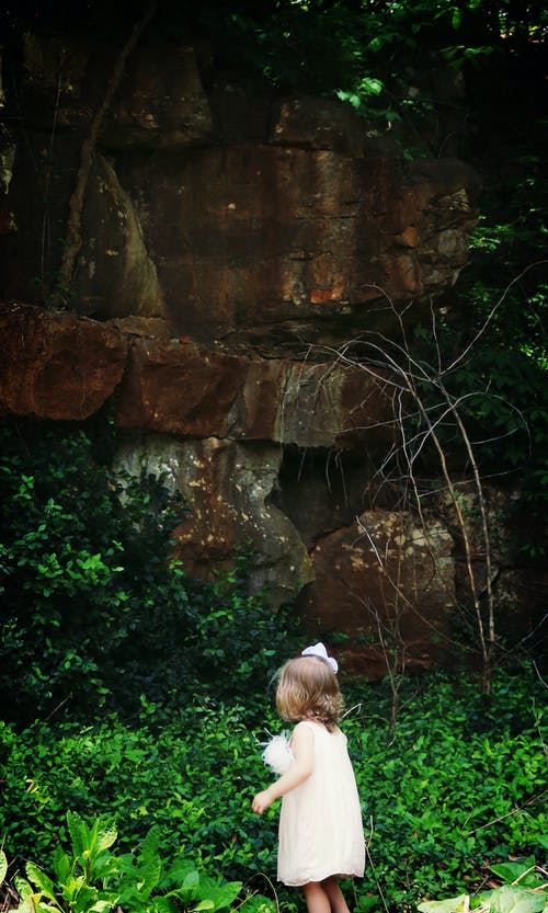 Ảnh lưu trữ miễn phí về cây, chập chững, con gái, đá