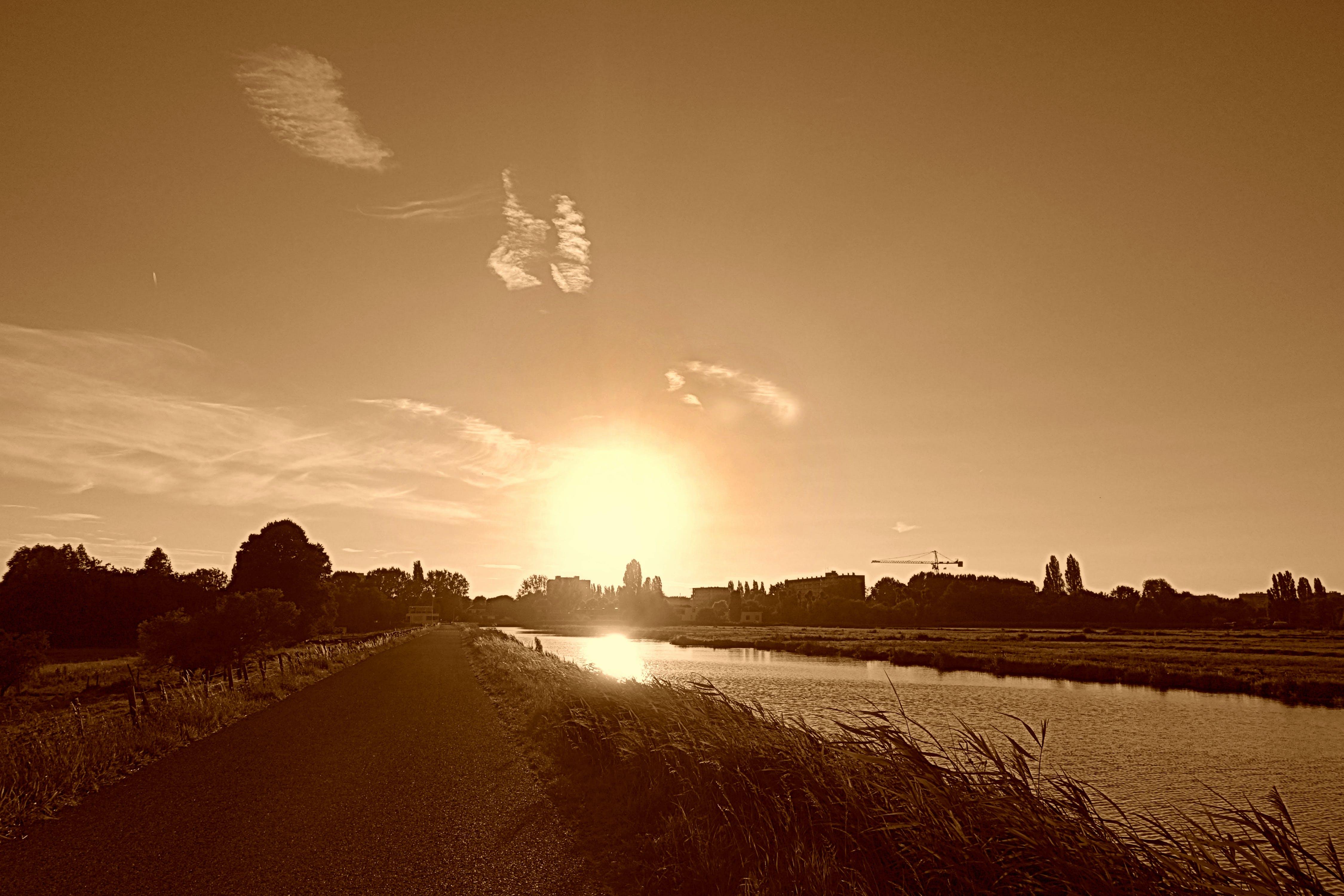 Free stock photo of dusk, evening, Holland, landscape