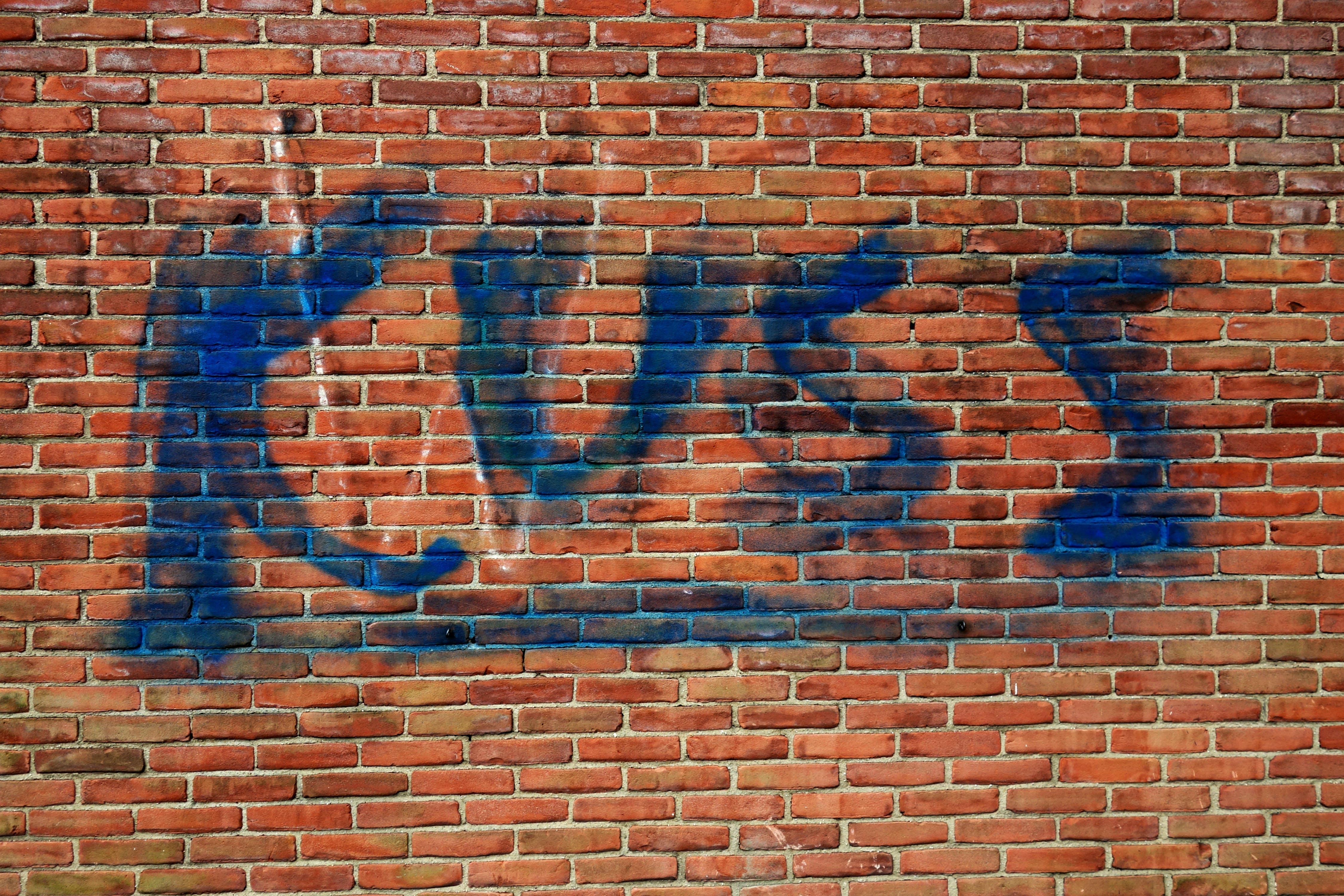 Free stock photo of street, graffiti, wall, wall art