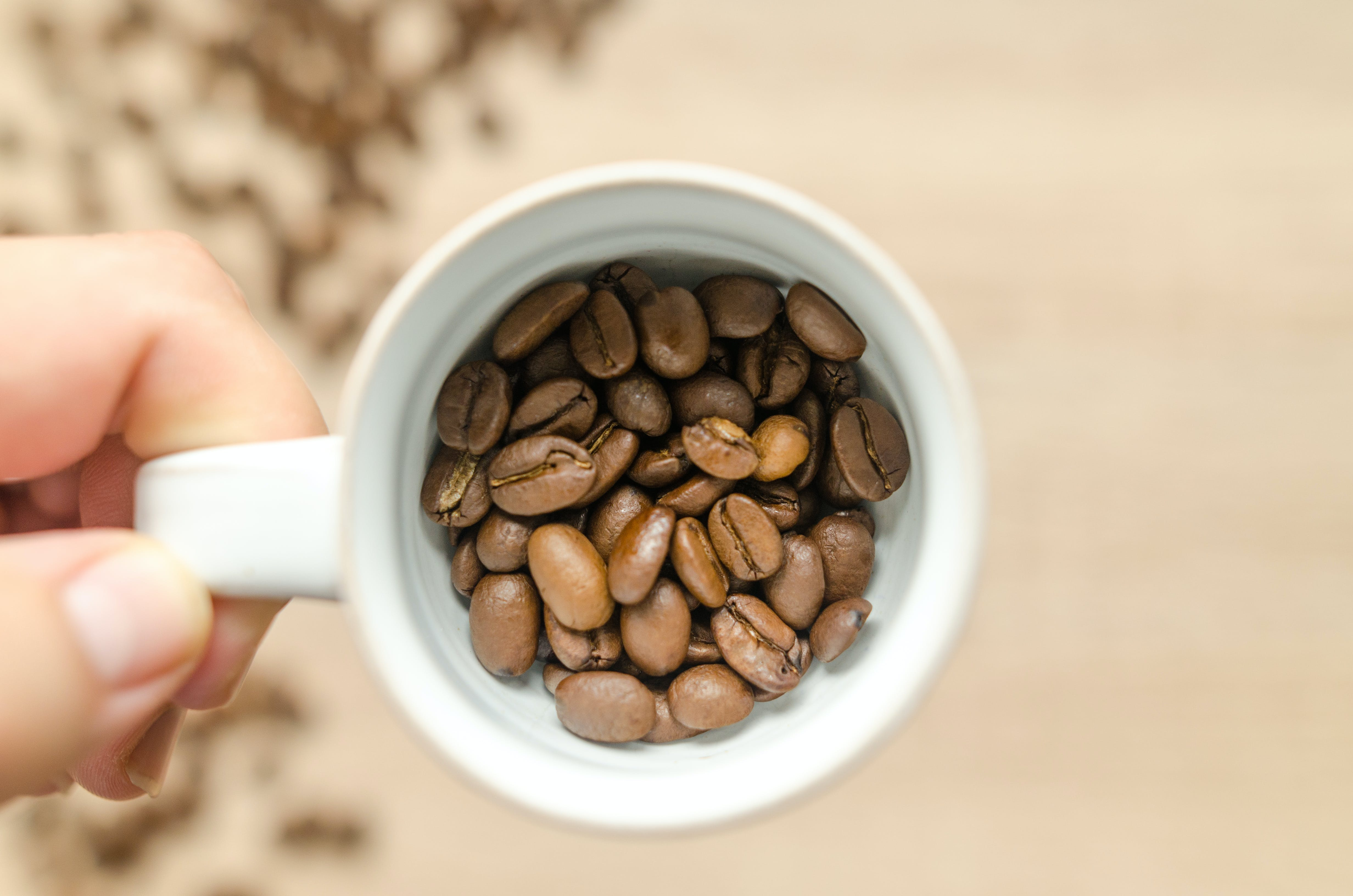Person Holding White Mug With Coffee Beans
