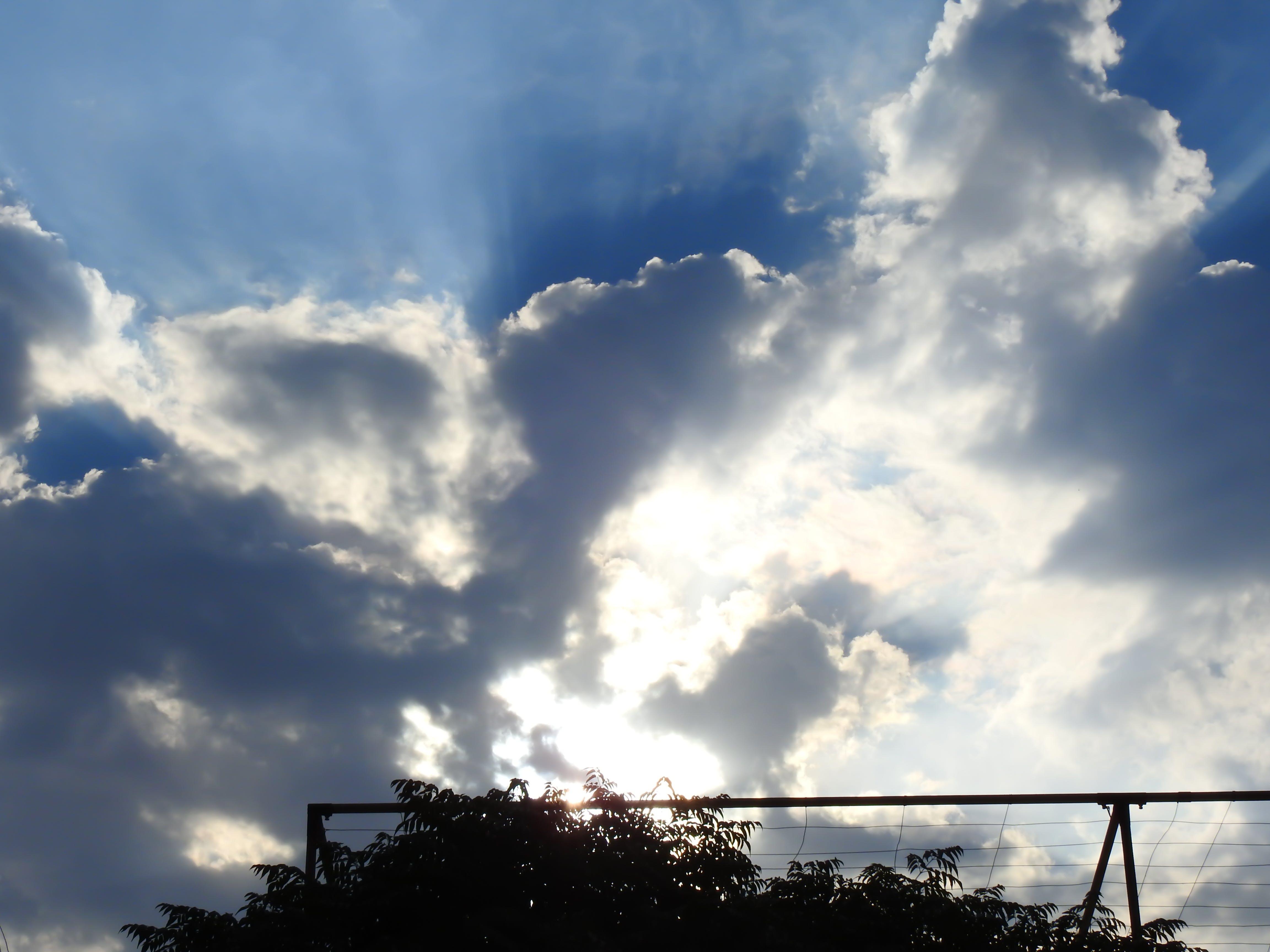 Free stock photo of blue sky, sky
