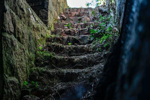 Безкоштовне стокове фото на тему «Денне світло, каміння, камені, краєвид»