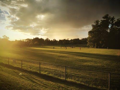 Fotografia Di Paesaggio Di Persone Sul Campo Di Erba Verde