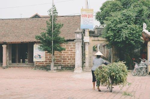 Foto profissional grátis de agricultor, aldeia, ancião, ao ar livre