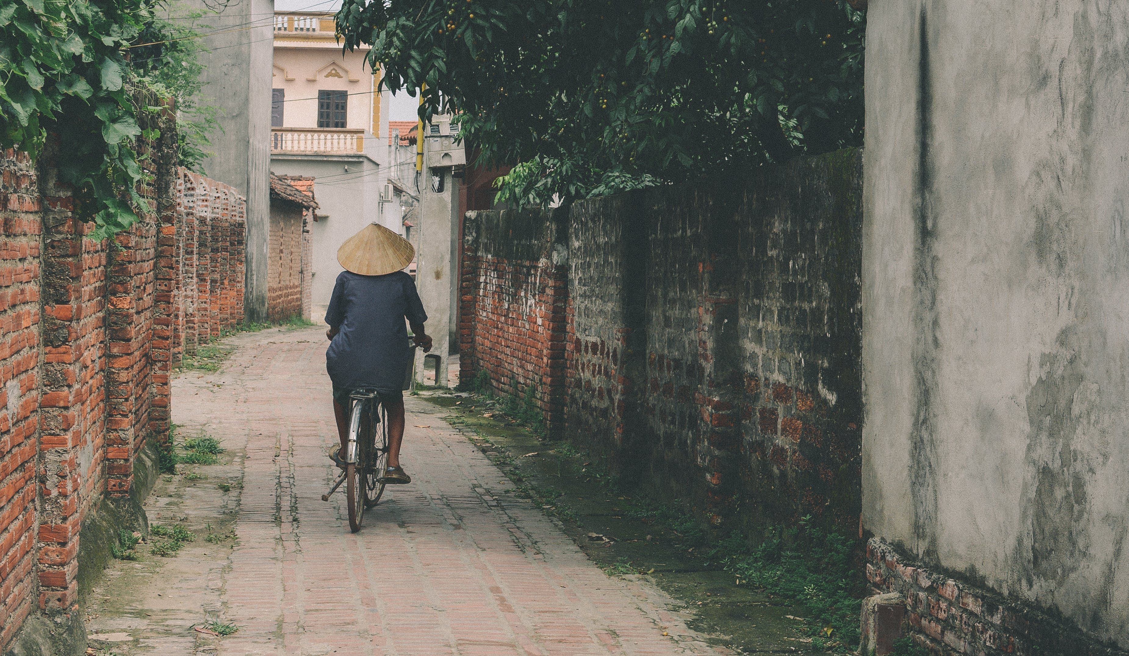 Person Riding Bicycle in the Middle of an Alley