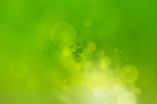 Free stock photo of background, bright, bubble, color