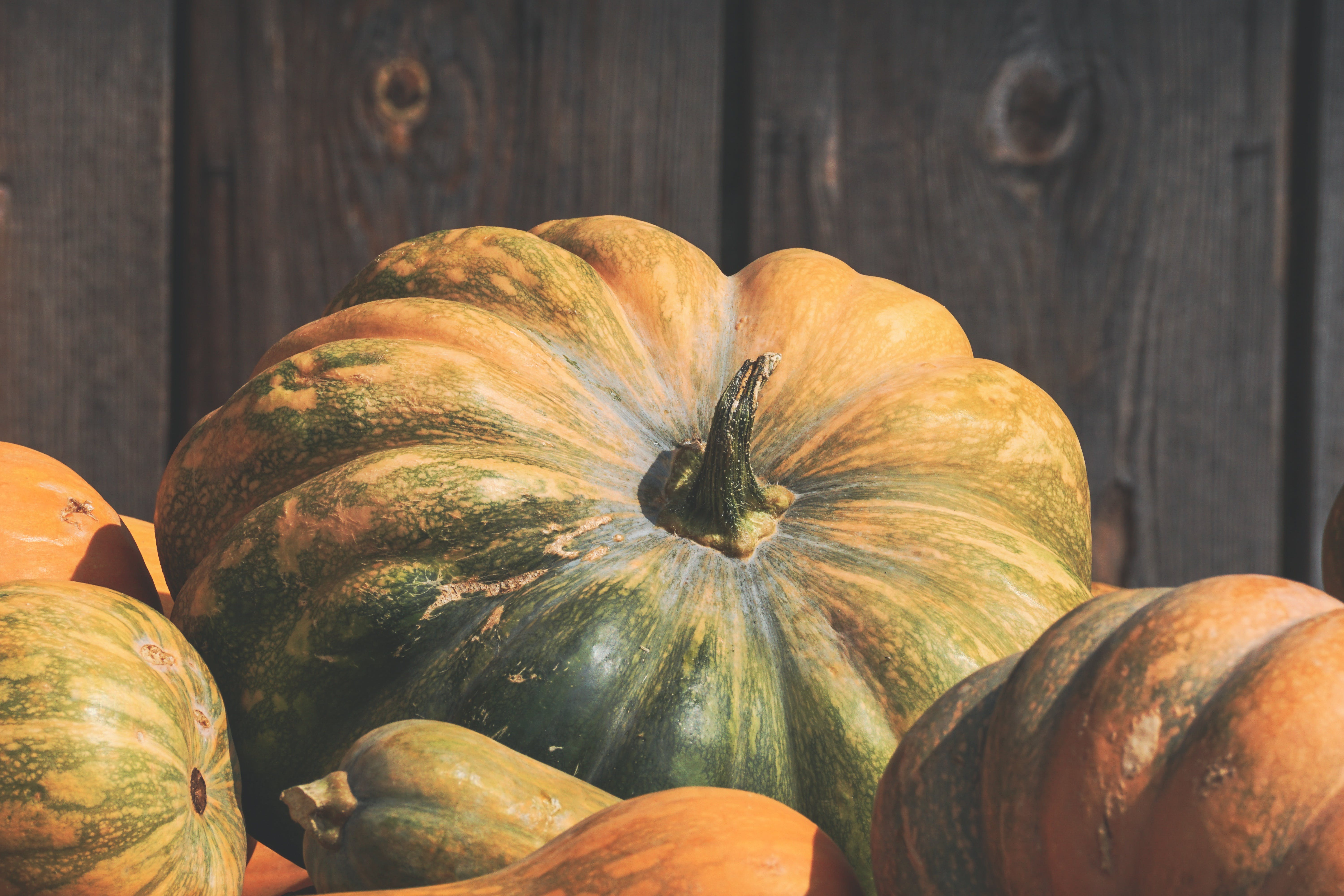 Close-up Photo of Orange and Green Squash