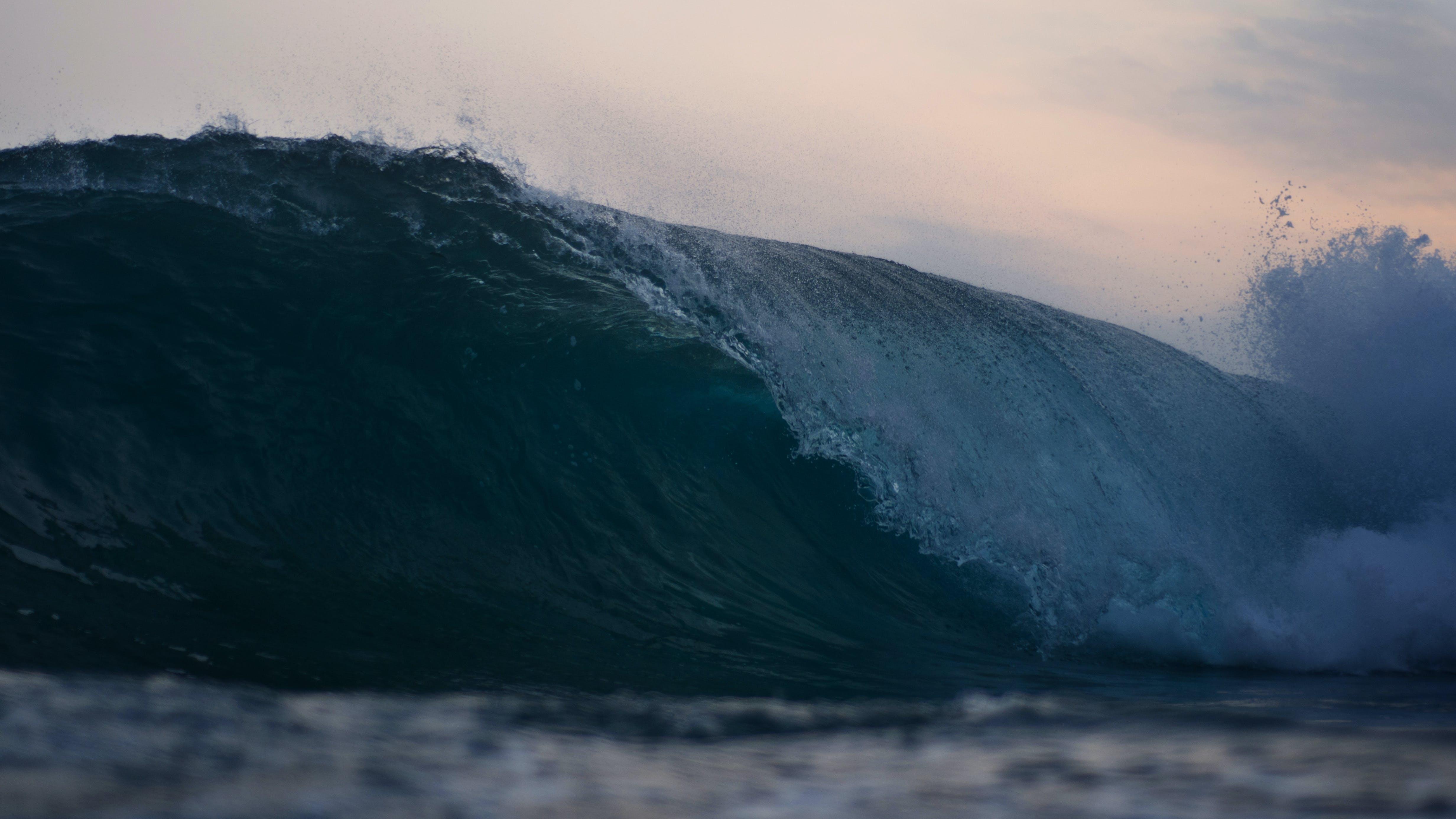 Fotos de stock gratuitas de amanecer, cuerpo de agua, dice adiós, hacer surf