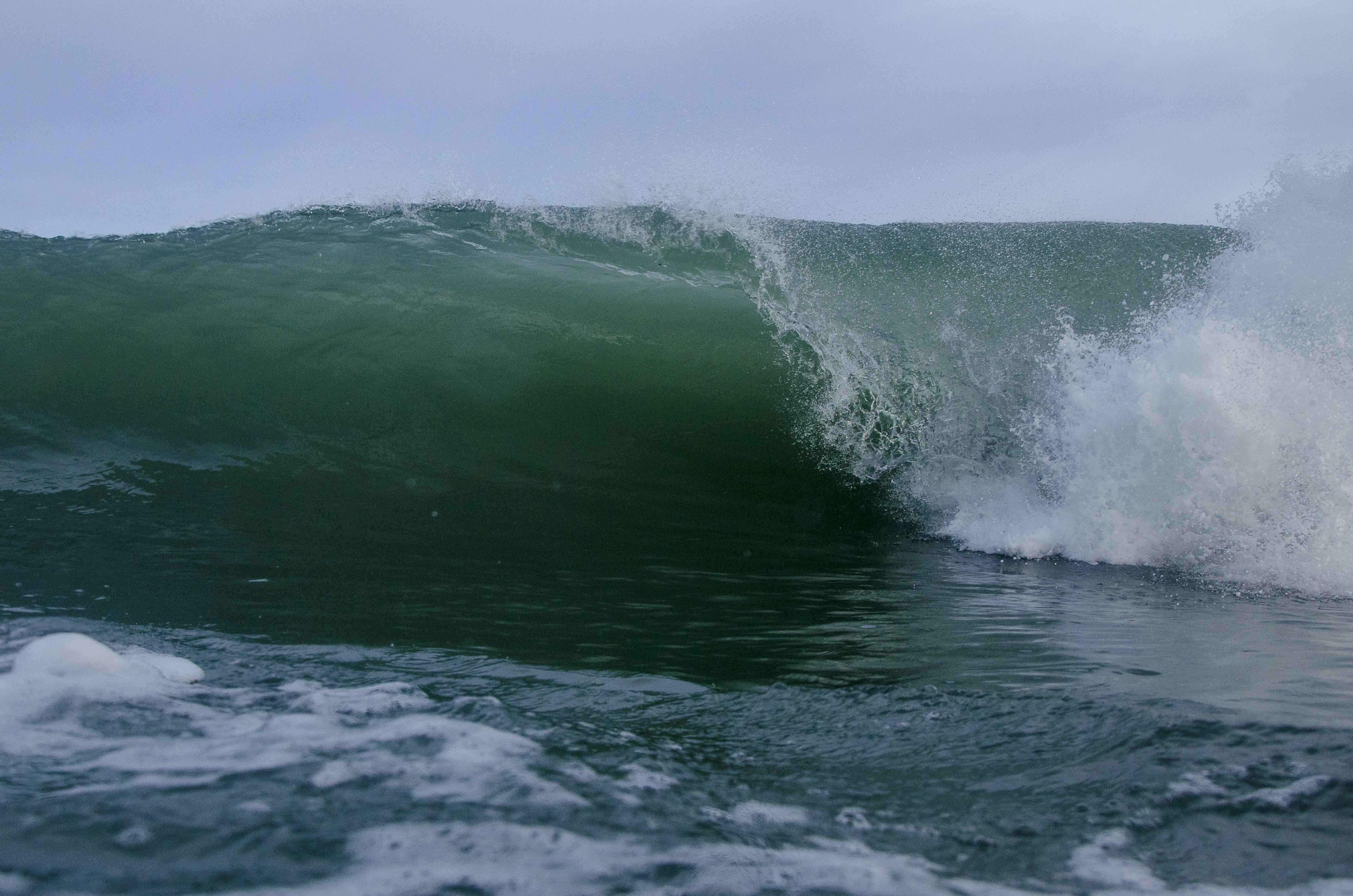 Gratis lagerfoto af bevægelse, bølger, forside, grøn