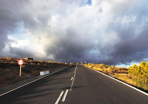 Δωρεάν στοκ φωτογραφιών με άσφαλτος, αυτοκινητόδρομος, γρασίδι, δέντρα
