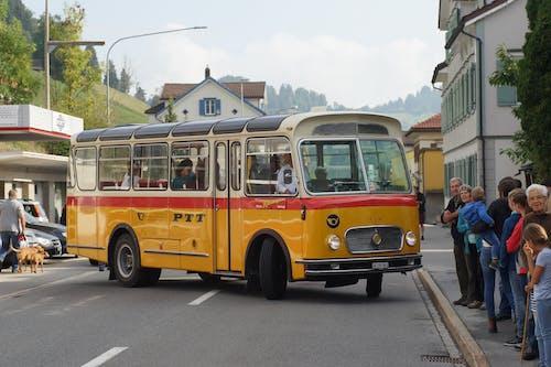 Darmowe zdjęcie z galerii z ciężarówki, żółty