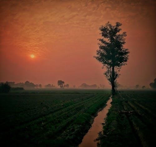 Gratis lagerfoto af #photographylover #worldbestgram #iglobal_photogra