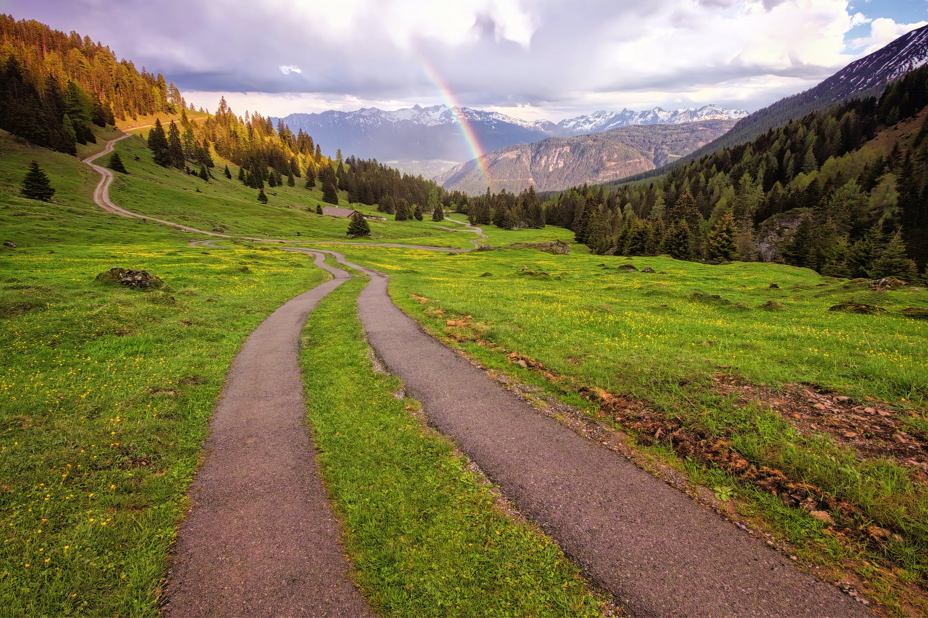 path with green grass and rainbow