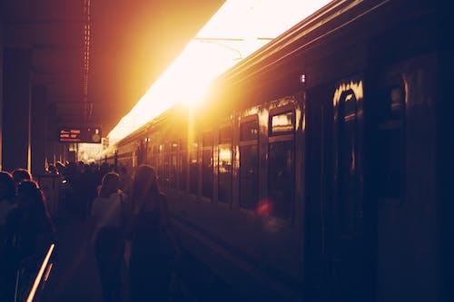 Základová fotografie zdarma na téma dojíždějící, krajina, lidé, lokomotiva