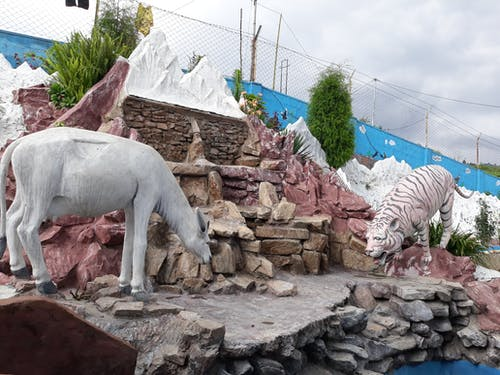Foto profissional grátis de animal artificial, artificial, bhaktapur, chhaling