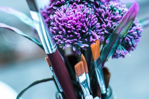 Ilmainen kuvapankkikuva tunnisteilla harjat, lila, luova, maalata