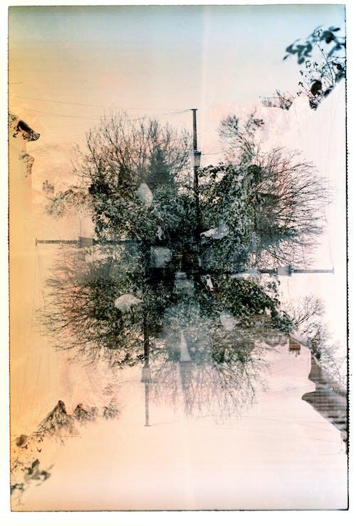 Free stock photo of memory, multiple exposure, paradox, pole
