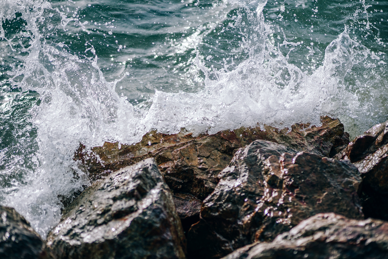 Безкоштовне стокове фото на тему «берег моря, великий план, вода, денний час»
