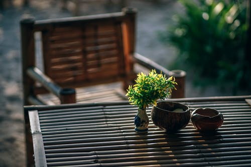 Selective Focus Photography of Green Leafed Plant on Table