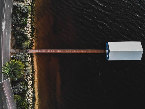 Základová fotografie zdarma na téma denní světlo, dok, dřevo, krajina
