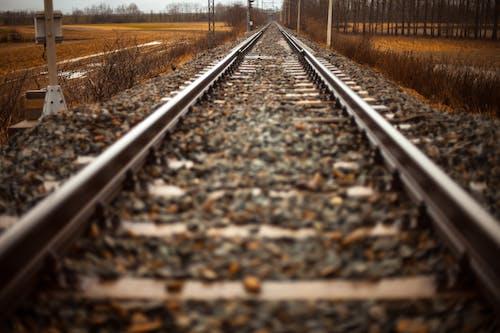 Gratis arkivbilde med jernbaner, rett, sti, tog