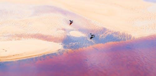 Základová fotografie zdarma na téma cestování, evropa, Mars, mimozemšťan
