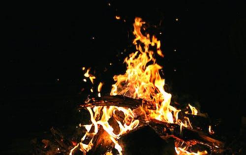 Бесплатное стоковое фото с камин, огонь, отпуск, природа