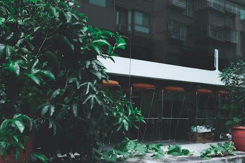 Photos gratuites de architecture, bâtiment, centrales, citadin