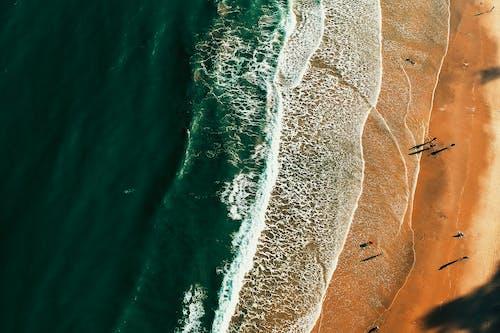 Foto d'estoc gratuïta de a la vora de l'oceà, acomiadar-se, aigua, estiu