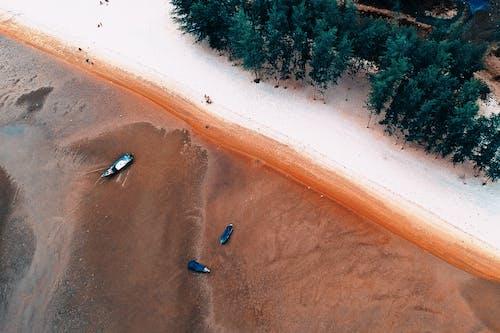 Δωρεάν στοκ φωτογραφιών με άμμος, Άνθρωποι, βάρκες, γνέφω