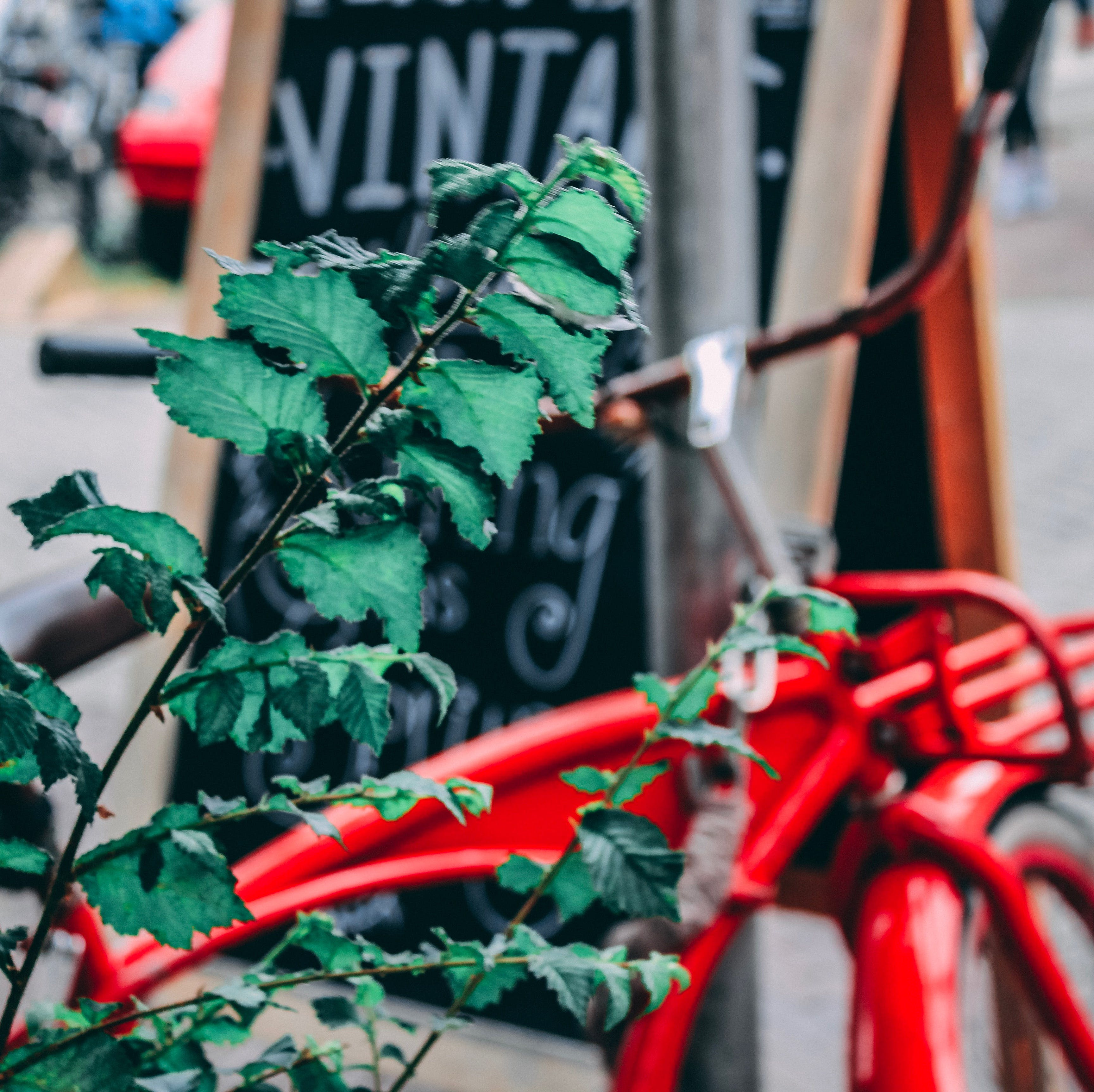 Free stock photo of amsterdam, vintage bicycle, Vintage Shopping