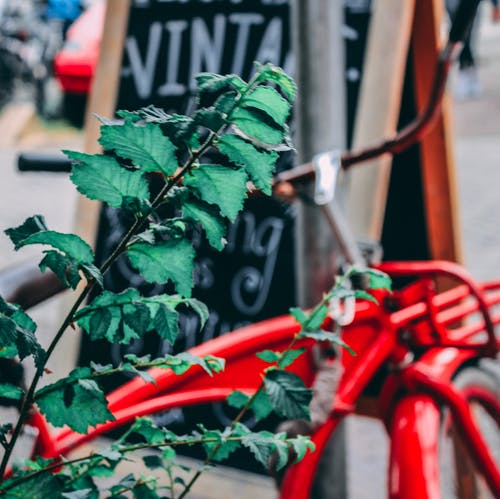 Kostenloses Stock Foto zu amsterdam, vintage fahrrad, vintage-shopping