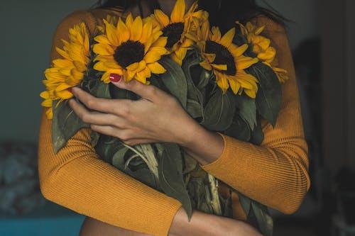 Immagine gratuita di bocciolo, bouquet, fiori, flora