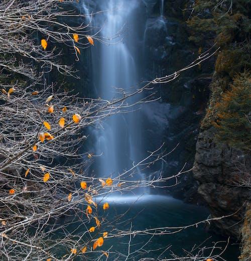 Бесплатное стоковое фото с åželale, gerce, водопад, водопады