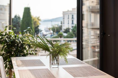 Foto d'estoc gratuïta de balcó, cadira, decoració, gerro