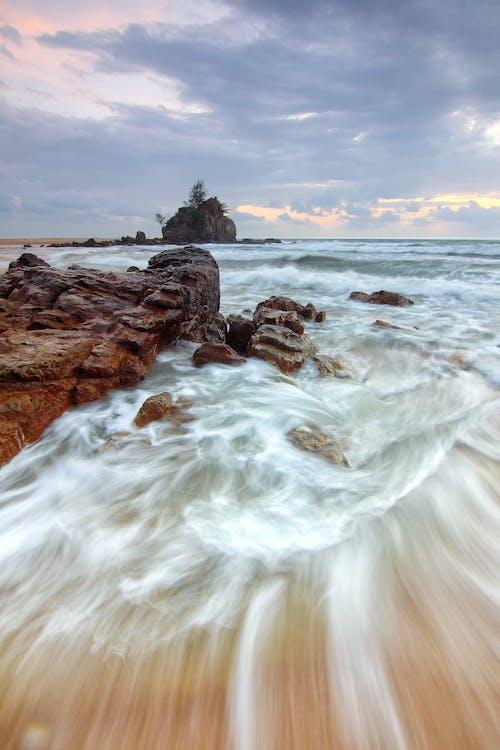Photos gratuites de arbres, bord de mer, cailloux, ciel