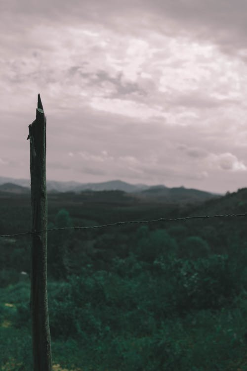 Безкоштовне стокове фото на тему «краєвид, настрій, шпалери»