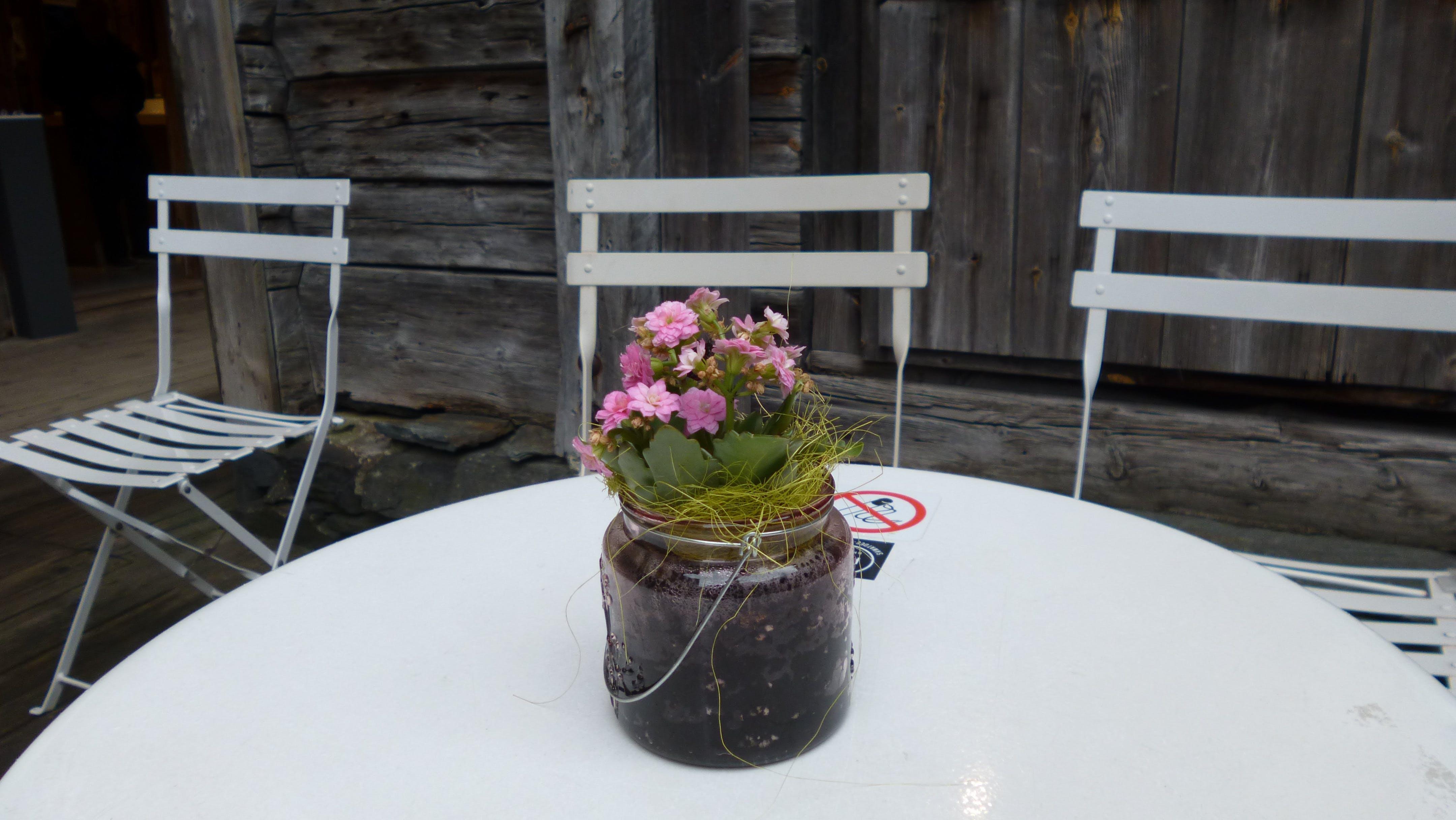 いす, フラワーズ, 花瓶の無料の写真素材