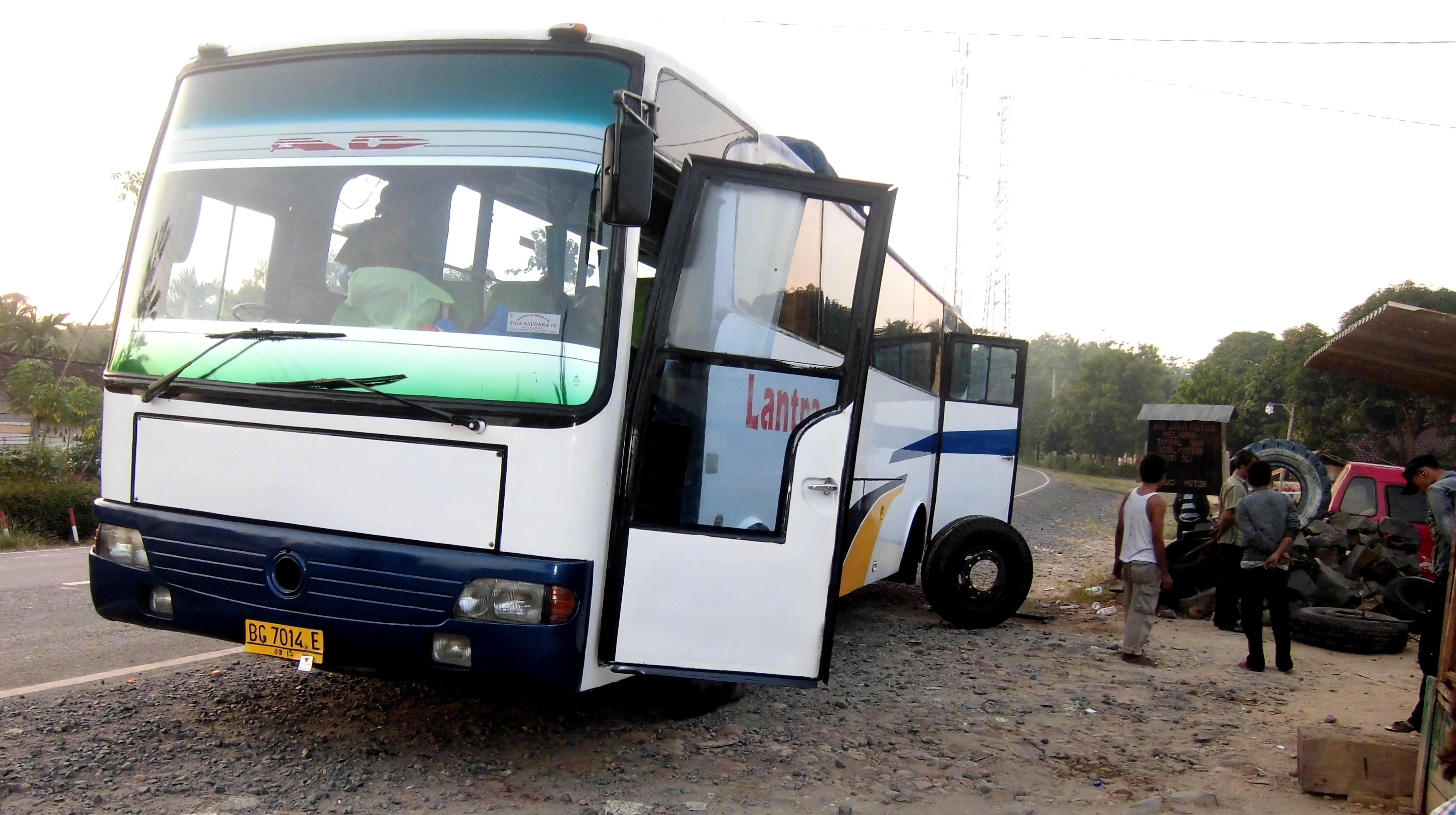 Free stock photo of bus, public transport, public transportation