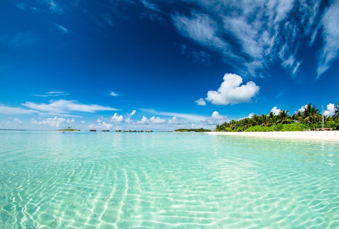 água, beira-mar, enseada