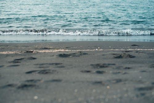 Základová fotografie zdarma na téma čára, moře, písek, prázdné místo