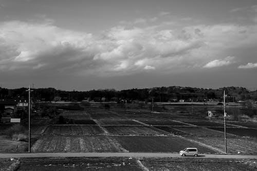 Photos gratuites de clairière, couvert, noir et blanc, nuages