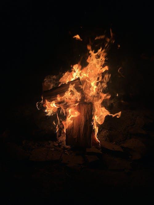 Foto profissional grátis de fogo