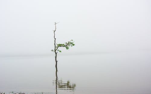 Free stock photo of exotic, holiday, horizon, lake vacation
