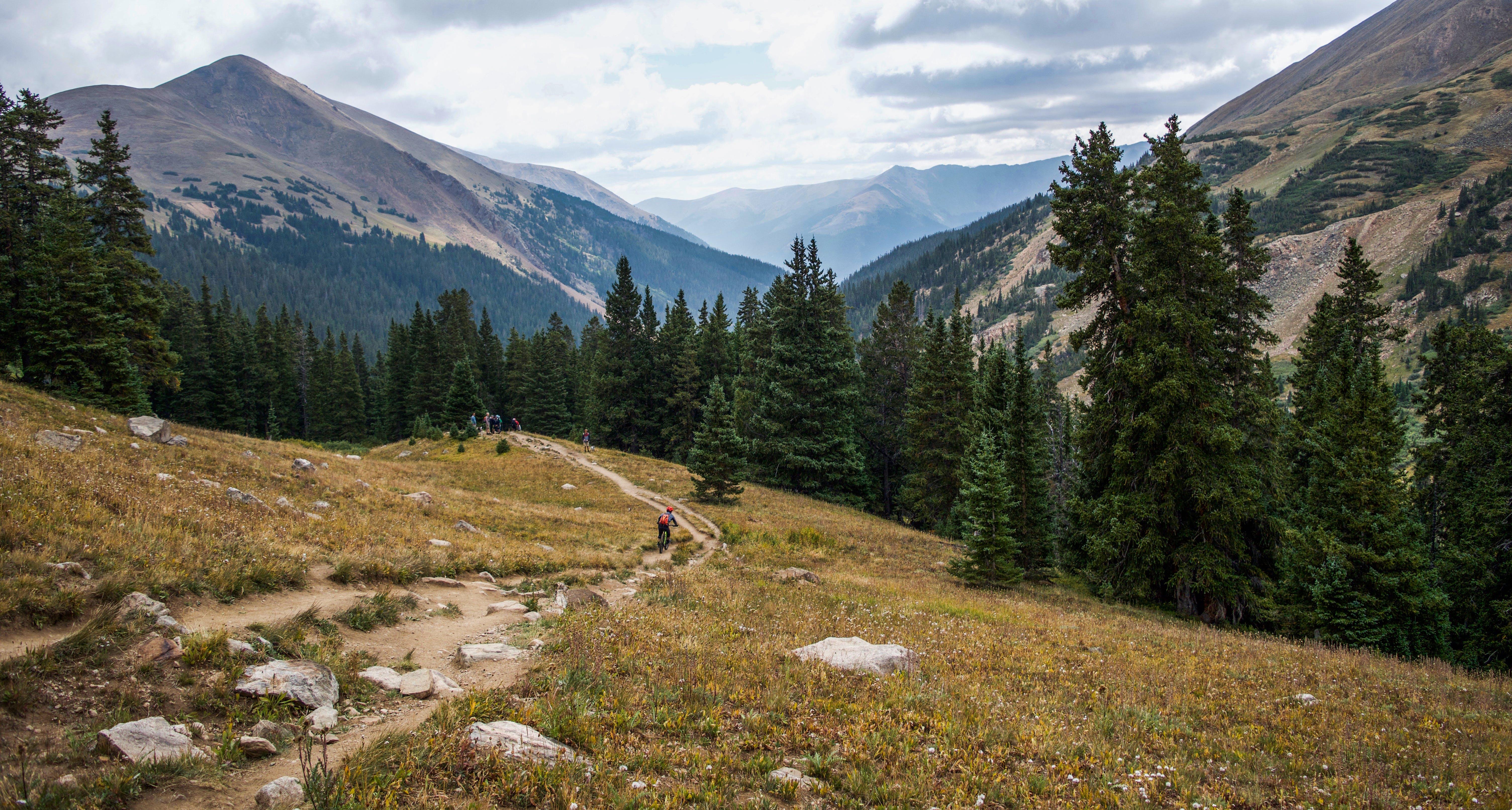 Kostenloses Stock Foto zu abenteuer, alpin, bäume, berg