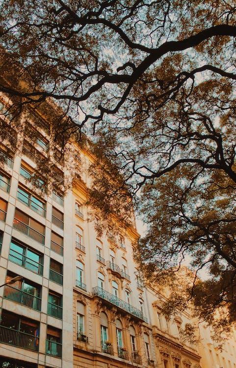 Ilmainen kuvapankkikuva tunnisteilla kaupunkinäkymä, rakennukset, Tumblr-taustakuva