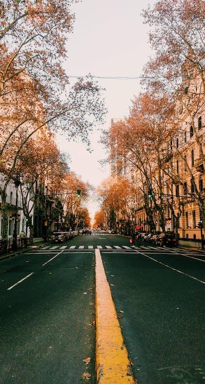Foto profissional grátis de foto da rua, fotografia urbana, papel de parede do tumblr