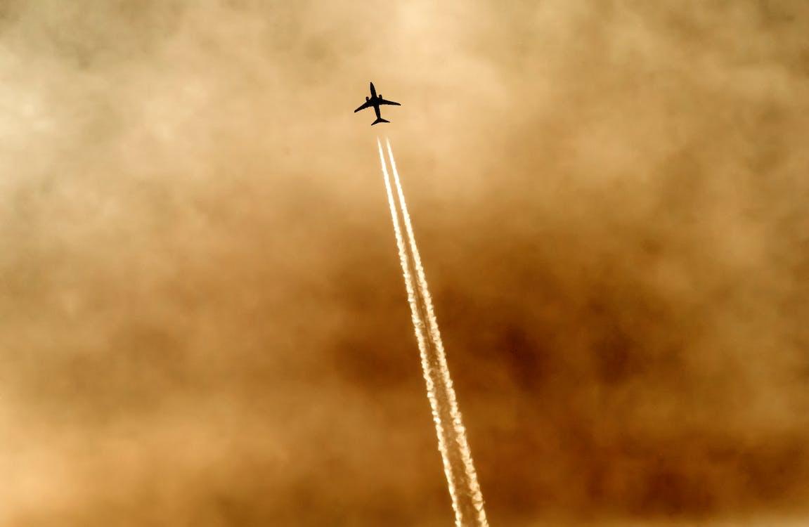 bầu trời, bay, bình minh