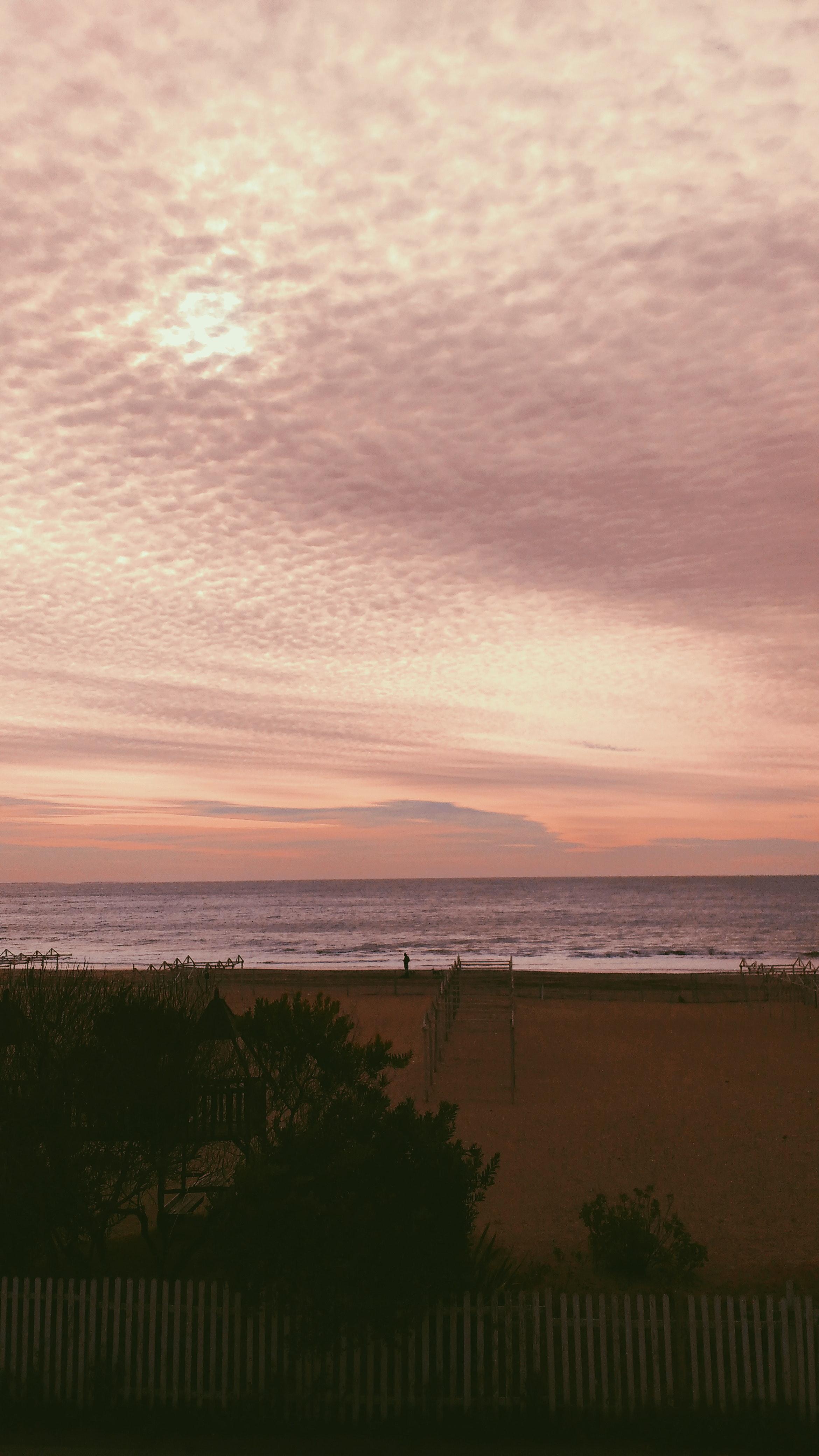pexels photo 1432154.jpeg?cs=srgb&dl=garis pantai kehidupan pantai wallpaper tumblr 1432154