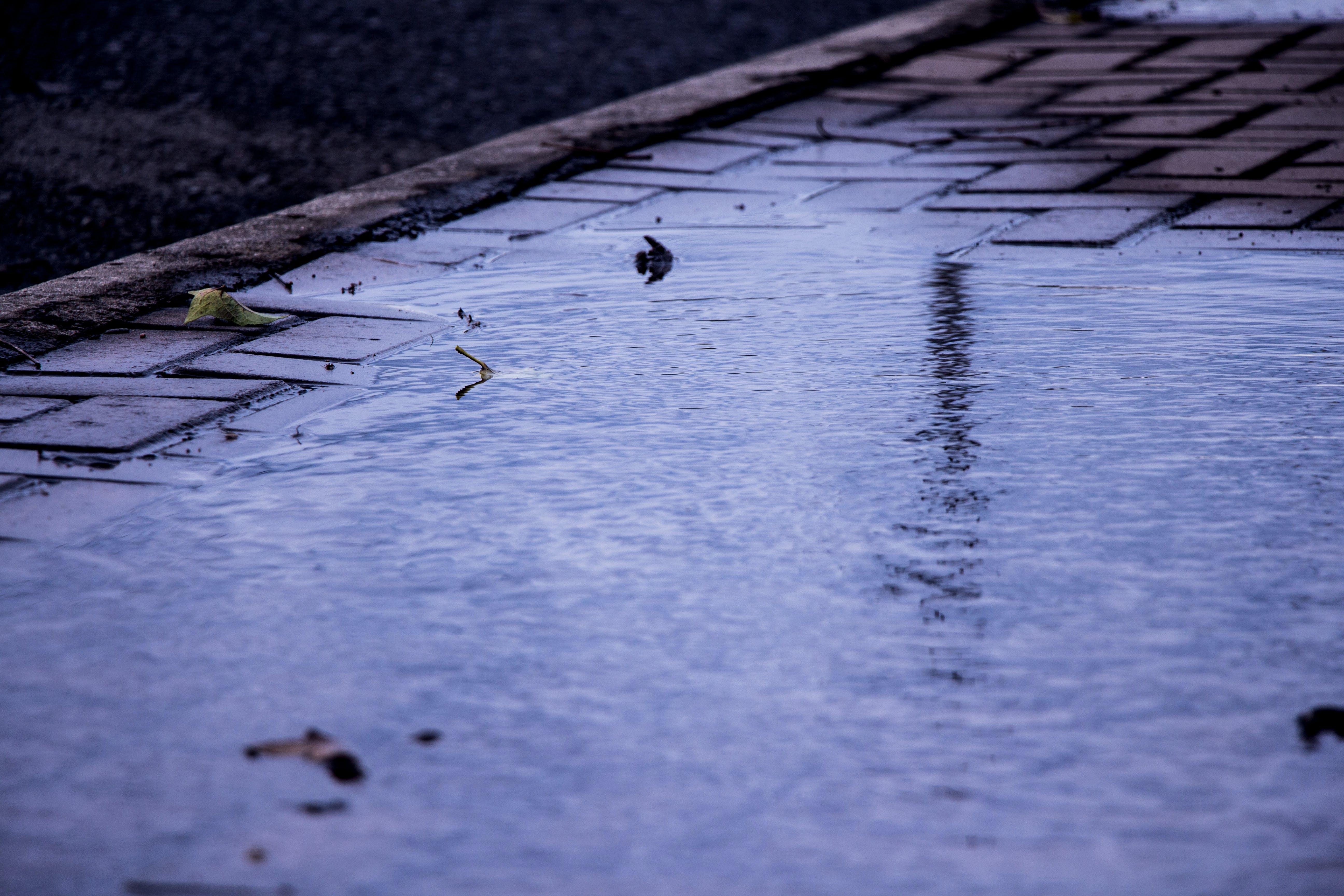 Kostenloses Stock Foto zu betrübt, nach dem regen, reflex, wasser